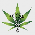 therapic cannabis