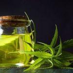 Tuto : préparer de l'huile de cuisine infusée au cannabis